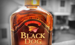 Thumbnail Black Dog Whisky Bottle