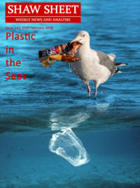 141 Cover Image Plastic in the Seas seagull and plastic bag in ocean