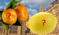 Oranges and Lemons Whitehall Mandarins