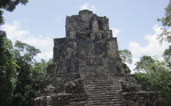 Letter From Yucatan Mexican rainforest