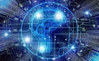 Neuroscience and us